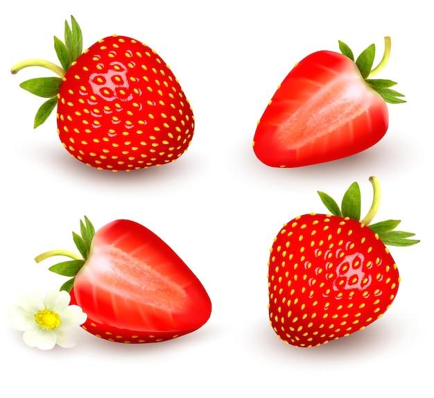 Un ensemble de fraises fraîches. illustration vectorielle.