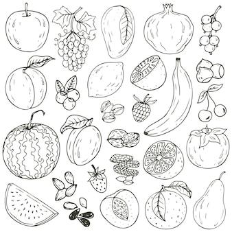 Ensemble de fruits frais et sains dessinés à la main isolés.