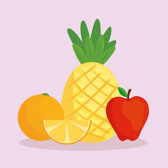 Ensemble de fruits frais tropicaux