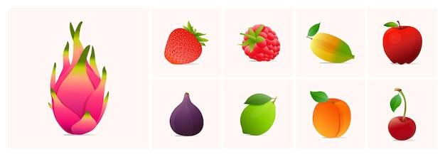 Ensemble de fruits illustrations vectorielles de style moderne