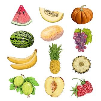 Ensemble de fruits et légumes en couleur, isolé sur blanc.