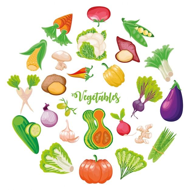 Ensemble de fruits et légumes frais