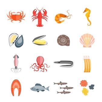 Ensemble de fruits de mer pour le menu de votre cuisine. style plat.
