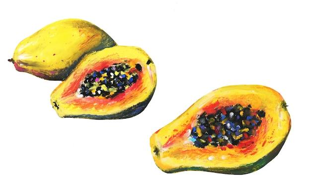 Ensemble de fruits de papaye en tranches tropicales peintes à la main.