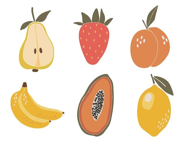 Ensemble de fruits tropicaux abstraits boho éléments tropicaux isolés vector illustration