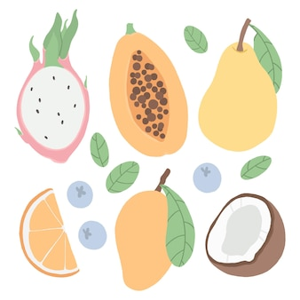 Ensemble de fruits tropicaux et de baies.