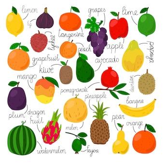 Ensemble de fruits tropicaux avec signes