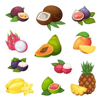 Ensemble de fruits tropicaux.