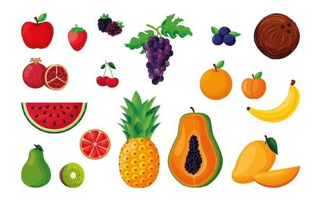 Ensemble de fruits vecteur