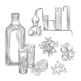 Ensemble de gin dans un style dessiné à la main sur fond blanc.lunettes avec cocktail gin et tonic, alambic, coriandre, zeste de citron.