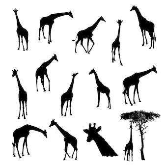 Ensemble de girafe silhouette vecteur illustration eps10