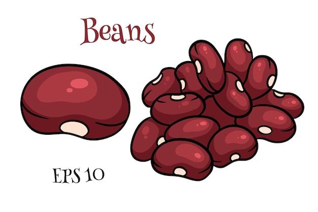 Ensemble de haricots. haricots rouges frais. dans un style cartoon. illustration vectorielle pour la conception et la décoration.