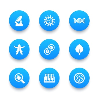 Ensemble d'icônes de biologie, division cellulaire, microscope, tube à essai, microbe, micro-organisme