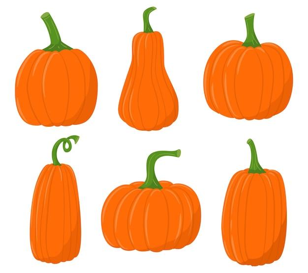 Un ensemble d'icônes de citrouilles plates colorées. récolte du fermier d'automne, jour de thanksgiving. potiron aux légumes