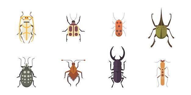 Ensemble d'icônes de conception de style plat insectes