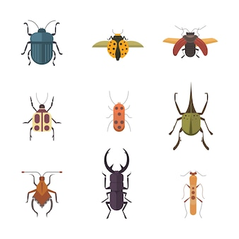 Ensemble d'icônes de conception de vecteur de style plat insectes. collection d'illustration de dessin animé de coléoptère de la nature et de zoologie isolée