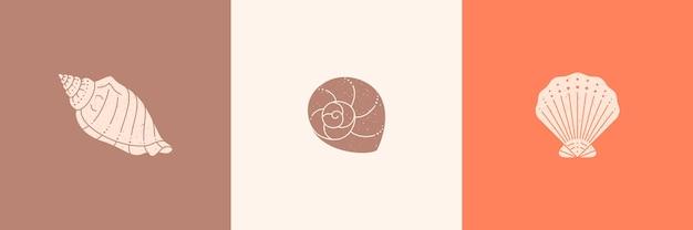 Ensemble d'icônes de contour de coquillages dans un style minimaliste branché. illustration vectorielle d'une conque, d'un escargot, d'une coquille saint-jacques et d'une huître pour le site web, l'impression de t-shirt, le tatouage, la publication sur les médias sociaux et les histoires