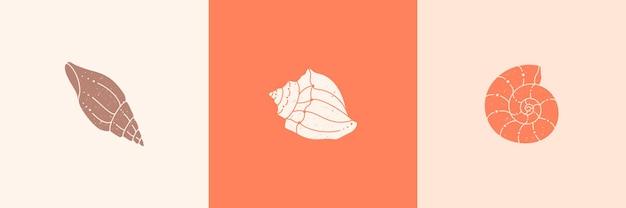 Ensemble d'icônes de contour de coquillages dans un style minimaliste branché. illustration vectorielle d'une conque, d'un escargot, d'un pétoncle et d'un site web, d'une impression de t-shirt, d'un tatouage, d'une publication sur les médias sociaux et d'histoires