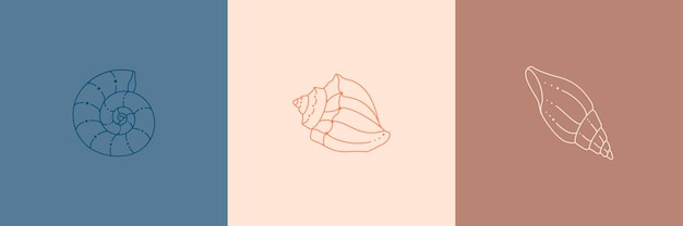 Ensemble d'icônes de coquillages dans un style linéaire minimal tendance. illustration vectorielle d'une conque, d'un escargot, d'un pétoncle pour un site web, d'une impression de t-shirt, d'un tatouage, d'une publication sur les médias sociaux et d'histoires