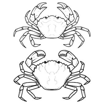 Ensemble d'icônes de crabes sur fond blanc. éléments pour le menu du restaurant, affiche.