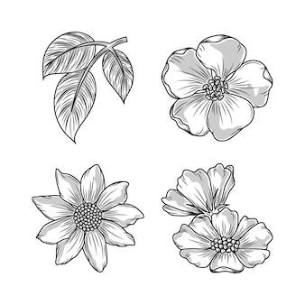 Ensemble d'icônes de croquis de feuilles de fleurs