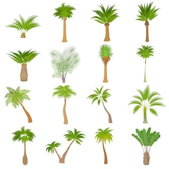 Ensemble d'icônes différents palmiers