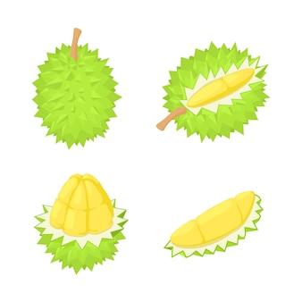 Ensemble d'icônes durian, style isométrique