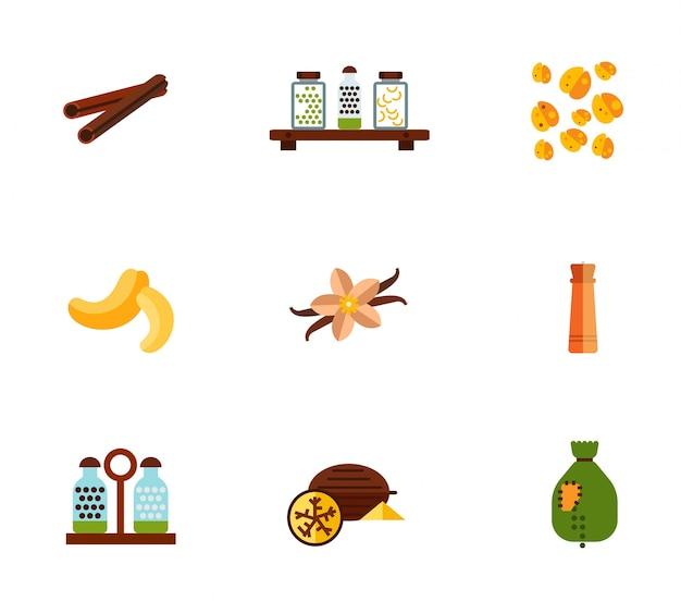 Ensemble d'icônes d'épices