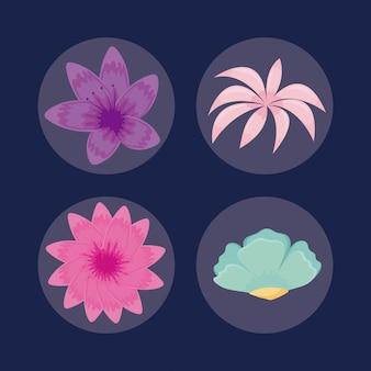 Ensemble d'icônes de feuilles tropicales