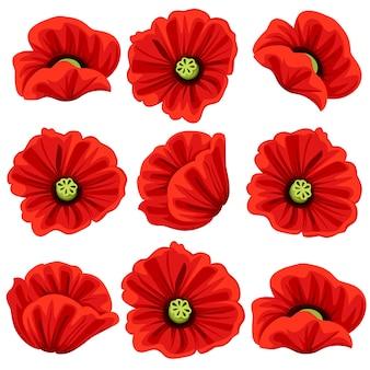Ensemble d'icônes de fleurs de pavot. symboles botaniques de fleurs de coquelicots rouges en fleurs. les bouquets de fleurs ou les bouquets fleuris s'épanouissent au printemps pour la décoration ou le modèle de voeux de vacances.