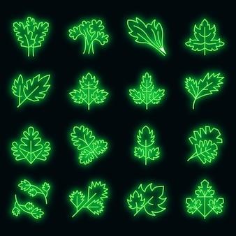 Ensemble d'icônes de persil. ensemble de contour d'icônes vectorielles de persil couleur néon sur fond noir
