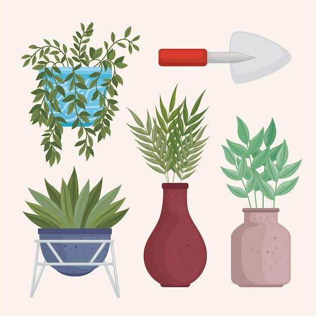 Ensemble d'icônes de plantes d'intérieur