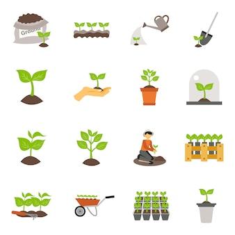 Ensemble d'icônes plat de semis