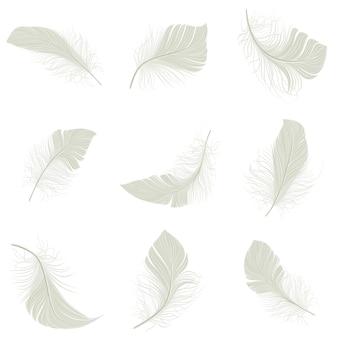Ensemble d'icônes de plumes