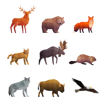 Ensemble d'icônes polygonales animaux sauvages du nord
