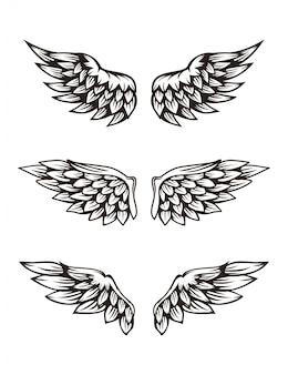Ensemble d'illustration de l'aile
