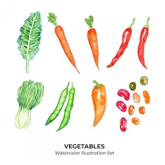Ensemble d'illustration aquarelle de légumes