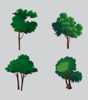 Ensemble d'illustration d'arbres vectoriels