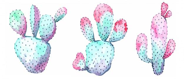 Ensemble d'illustration de cactus roses et bleus
