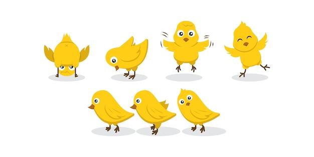 Ensemble d'illustration de conception de personnage de poulet bébé poussins