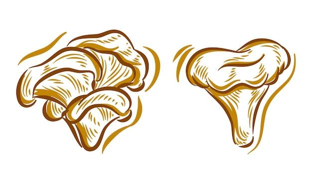Ensemble d'illustration de dessin de main de champignon pour l'élément de fond de logo de marque