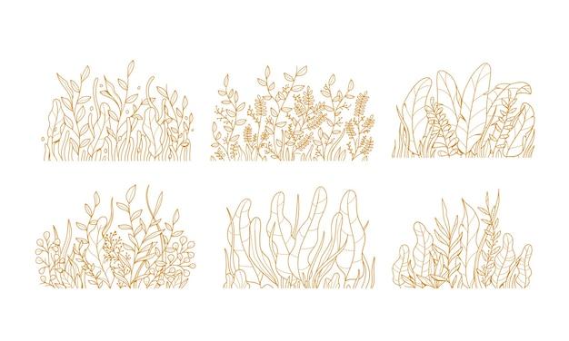 Ensemble d'illustration de feuilles de fleurs de plantes dessinées à la main vintage