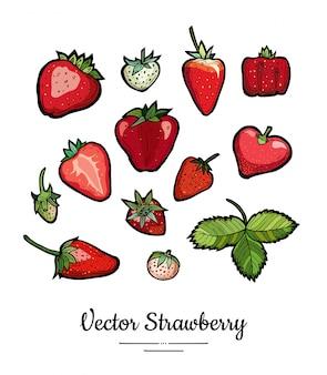 Ensemble d'illustration fraise isoler sur blanc