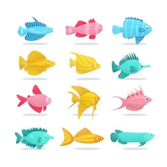 Ensemble d'illustration de poissons colorés