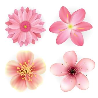 Ensemble d'illustration réaliste de belles fleurs roses