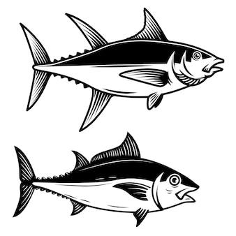 Ensemble d'illustration de thon sur fond blanc