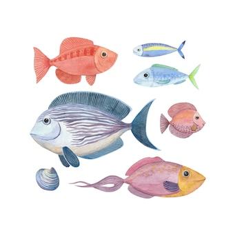 Ensemble d'illustrations à l'aquarelle avec des poissons