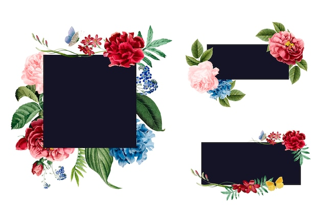 Ensemble d'illustrations de cadre floral
