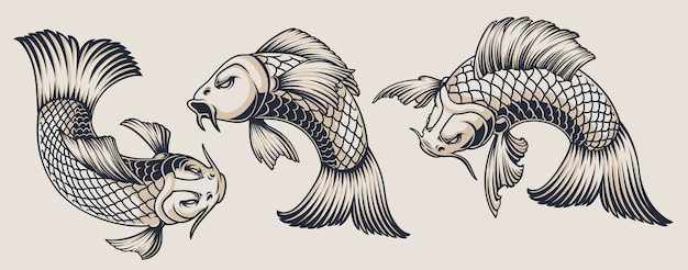 Ensemble d'illustrations de carpes koi sur fond blanc. toutes les illustrations sont dans des groupes séparés. pratique pour changer de couleur et utiliser séparément.