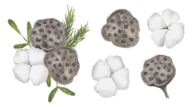 Ensemble d'illustrations en coton et lotus à l'aquarelle décor naturel de noël et du nouvel an